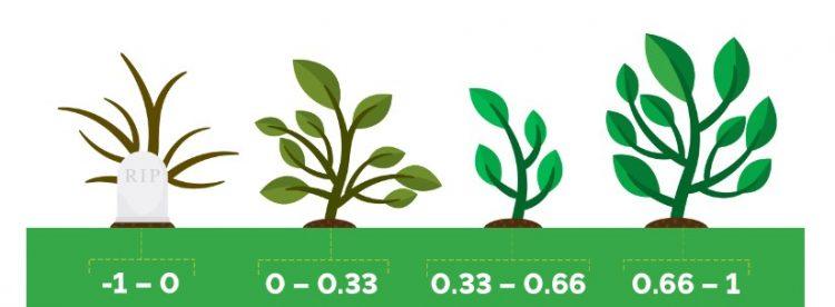 NDVI nedir? NDVI Teknolojisinin Bitki Sağlığına Katkısını Anlamak Rembeltech.com